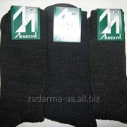 Носки мужские Лебезун, уплотненные, азмер 25;27;29 фото