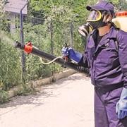 Дезинсекция, уничтожение вредных насекомых фото