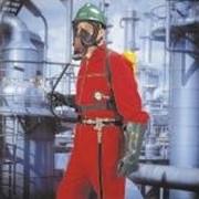 Шланговые дыхательные аппараты сжатого воздуха MSA DSL фото