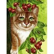Раскраски по номерам. Кот на вишнёвом дереве фото