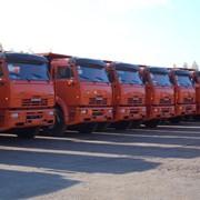 Перегон товарной грузовой техники и автобусов фото