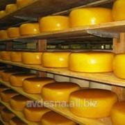 Сыр Российский особый 50 % жирности Березино фото