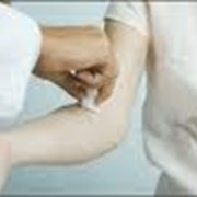 Анализы крови на содержание мужских и женских половых гормонов фото