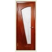 Двери водостойкие фото