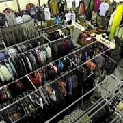 Одежда стоковая Fracomina Женский Одежда микс 86 77 фото