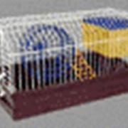 Клетка СЕВA № 2 (Для грызунов) фото