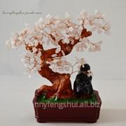 Сувенир денежное дерево, розовый кварц фото
