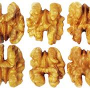 Светлые половинки грецкого ореха фото