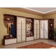 Мебель встроенная под заказ фото