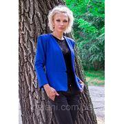 Пиджак Chanel (2104/КЛ)/электрик фото