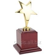 Награда Звезда фото