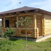 Деревянные срубы бань и домов фото