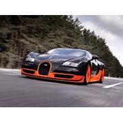 Автомобили гоночные фото