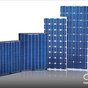 Фотоелектричекий модуль Canadian Solar 250W/24 POLY фото