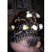 Услуги парикмахерские в Алматы фото