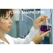Проведение лабораторных анализов фото