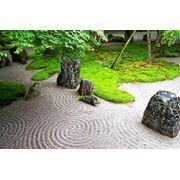 Японские сады фото