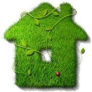 Озеленение домовозеленение фото