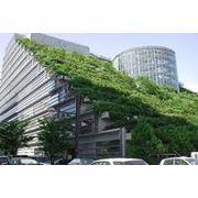 Озеленение крыш домовозеленение фото
