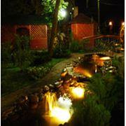 Ландшафтное освещение фото