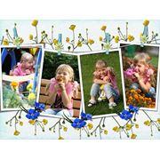 Фотосъемка детская в Владивостоке - цены, фото, отзывы, купить фотосъемку детскую оптом или в розницу в Владивостоке - BizOrg.su