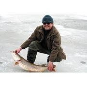 Рыболовство в реках озерах водохранилищах прудах фото