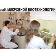 Услуги аналитических лабораторий для агрономии фото