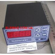 Терморегулятор Термотест-04/2 до+1000 С фото