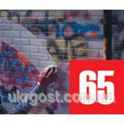 Анти граффити ЕС-65 1л фото