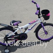 Велосипед детский Sport S20 фото