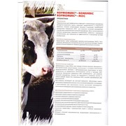 Кормомикс - пребиотик фото