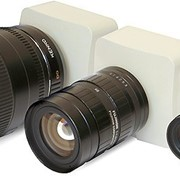 Сетевые камеры фото