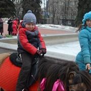 Детские прогулки на пони фото