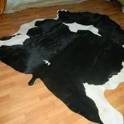 Шкуры крупного рогатого скота , мокросоленные фото