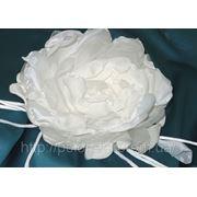Цветок белый из органзы и шифона фото