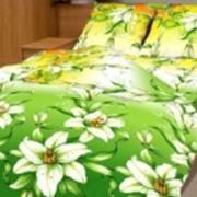 Ткань постельная Бязь 142 гр/м2 220 см Набивная цветной 3088-1/S536 TDT фото
