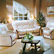 Мебель для дома. фото