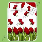 Бязь плотная с тюльпанами фото