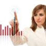 Сбор информации и аналитика для создания бизнес-планов фото