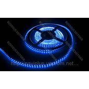 LED лента SMD 3528, 120 шт/м, синяя фото