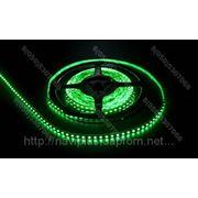 LED лента SMD 3528, 120 шт/м, зеленая фото