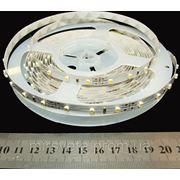 Светодиодная лента 3528, 60/м, IP33, Rishang, холодный белый фото