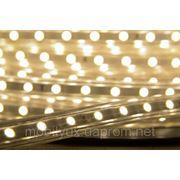 Светодиодная лента Led SMD 5050 60шт/м IP67 220В тепло белая фото