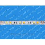 Светодиодная лента FHT 862N/W фото