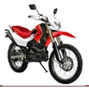 Мотоцикл IRBIS TTR 250 250 фото