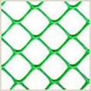Сетки пластиковые для сада и огорода код С ячейка 40х40 фото