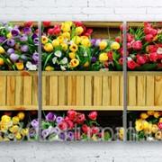 Модульна картина на полотні Квіти в дерев'яному вазонку код КМ100180-055 фото