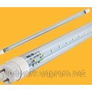 Светодиодная лампа T8-ECO 120cm фото
