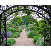 Арки садовые кованые фото