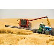 Сельскохозяйственные услуги фото